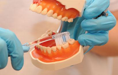 Saubere und gesunde Zähne